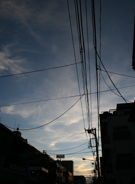 IMG_5010.JPG